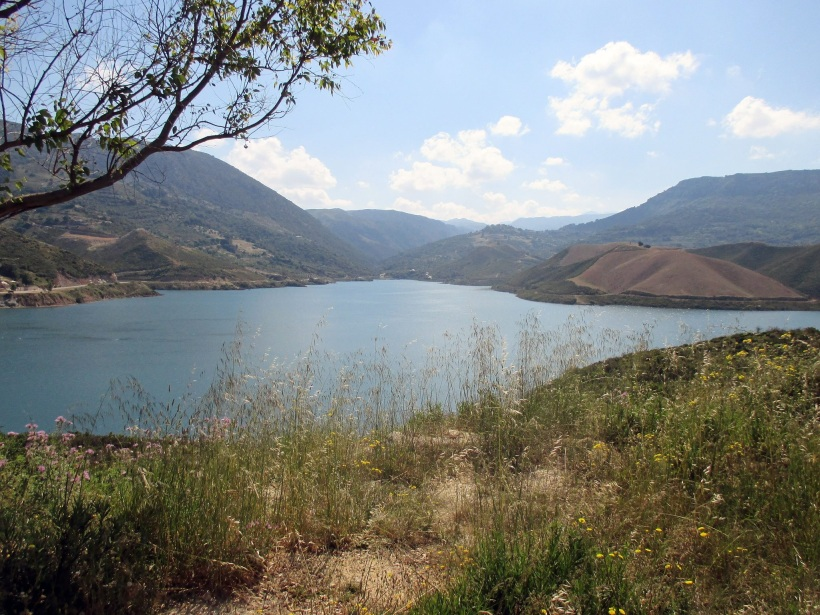 potamon dam